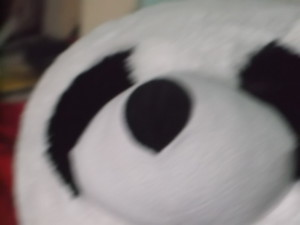 Vinesaucefan's Profile Picture