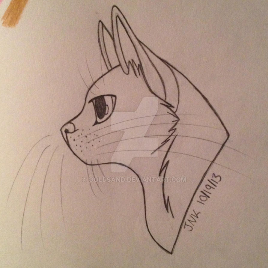 Simple Warrior Cat Drawing