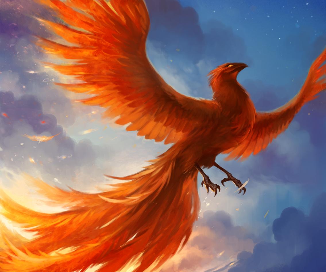 phoenix by sandara