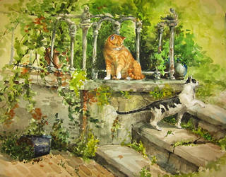 Cats watercolor by sandara