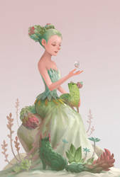 Succulents by sandara
