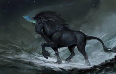 Black Mountain Unicorn 2 by sandara