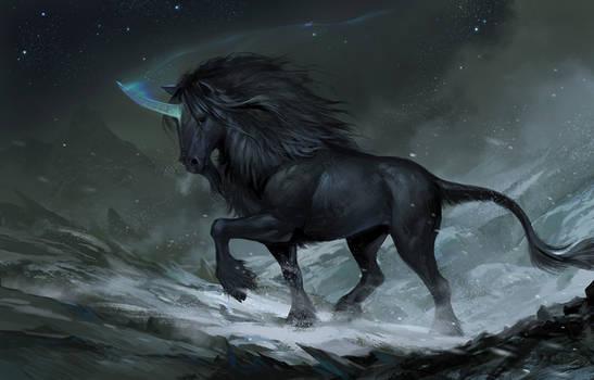 Black Mountain Unicorn 2