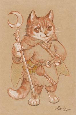 paper cat 1
