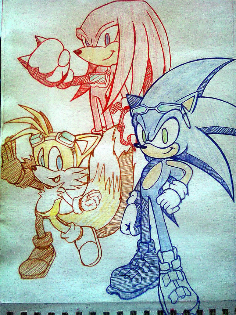 Sonic Riders_Team Sonic by Sky-The-Echidna