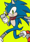 Happy 23rd Birthday, Sonic!!