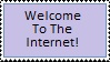 Welcome to the Internet, kids! by DawnFelix