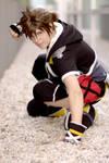 Sora: ready to fight