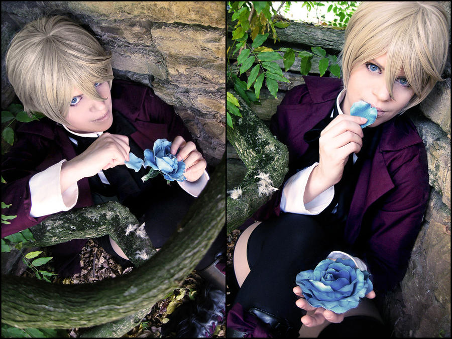 Alois Trancy: blue rose by chibinis-chan