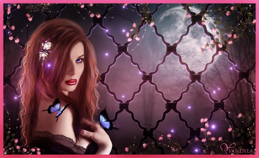 Secret Dreams by Vandyla