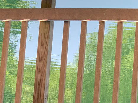 Gazebo Fence 7665 by HaywardMills