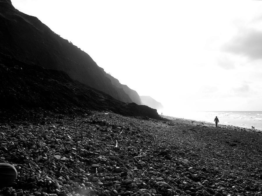 Cliffs at Lyme Regis by akaBadMedia