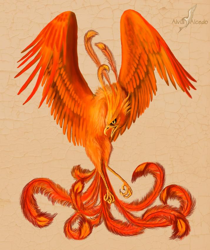 Presseschau - Seite 42 Red_phoenix_by_alviaalcedo
