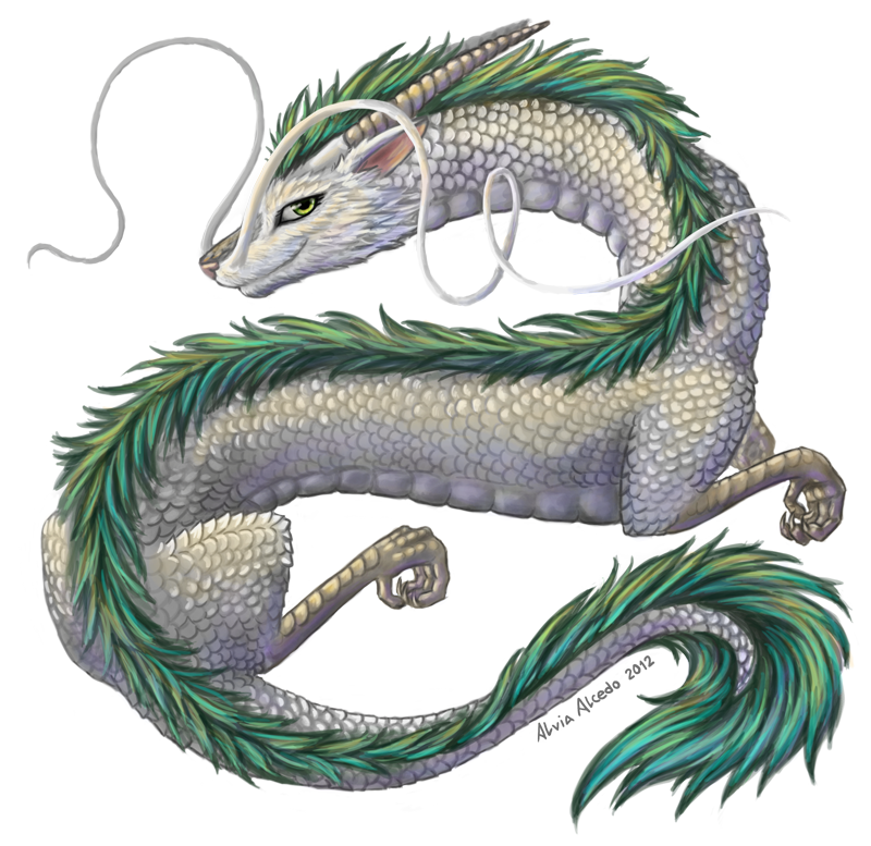 Haku the dragon by AlviaAlcedo