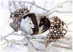 Black dragon and white wolf - stone painting OOAK
