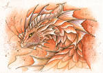 Brown forest dragon