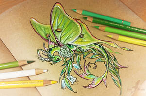 Lunar moth dragon by AlviaAlcedo
