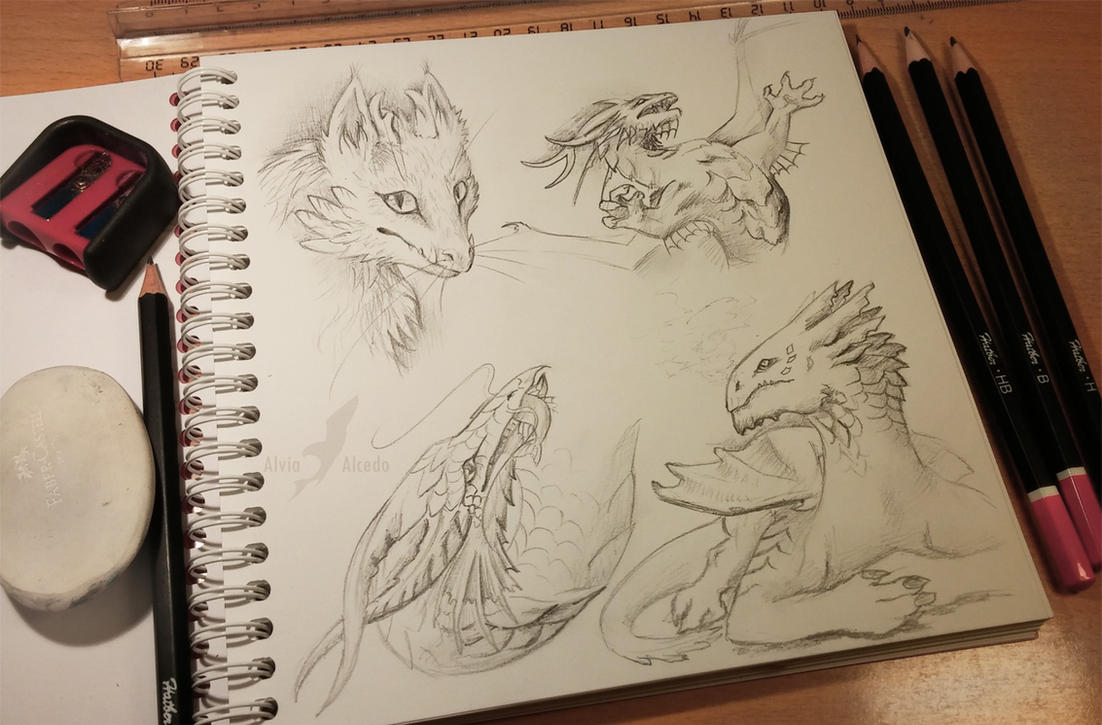 Dragon types by AlviaAlcedo