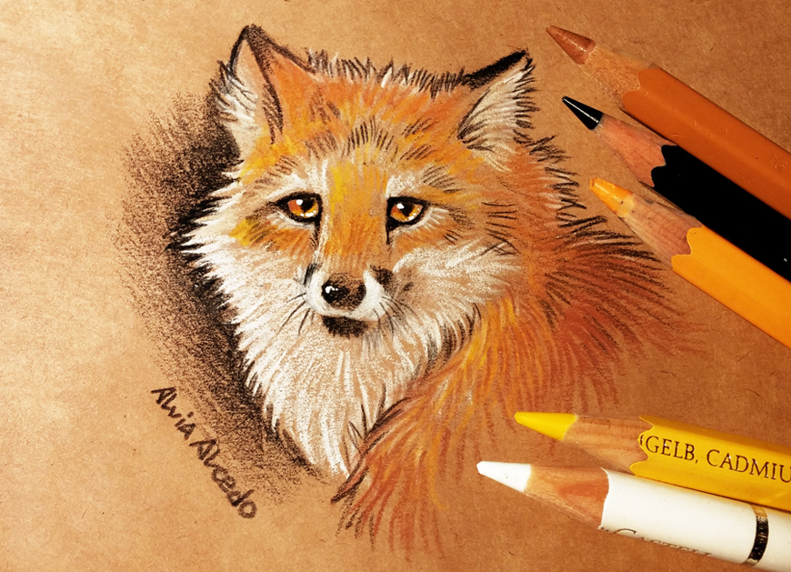 Fox by AlviaAlcedo