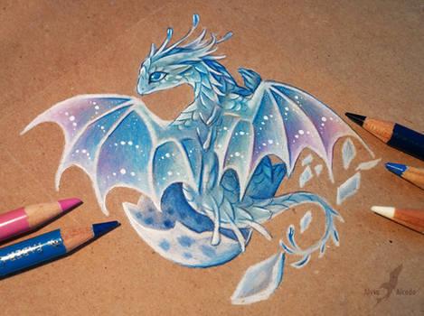 Little ocean dragon