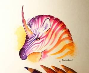 Magic zebra