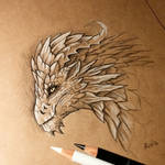 Old dragon's thoughts