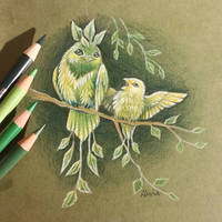 Forest birds