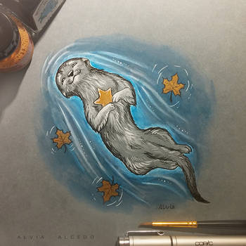 River otter by AlviaAlcedo