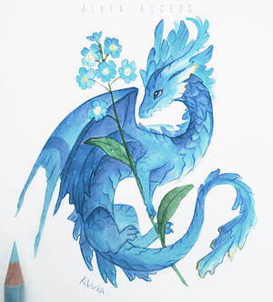 Forget me not dragon