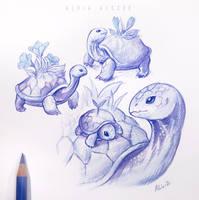 Flower turtles