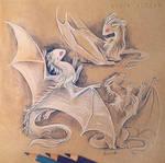 Drakes sketches