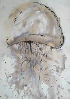 Jellyfish by thinkanti