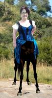 Centaur me