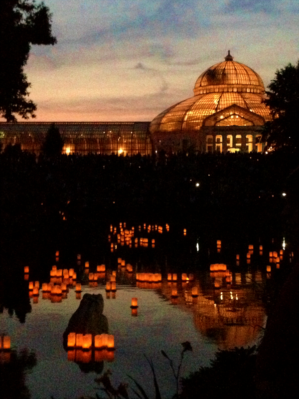 Anese Lantern Lighting Festival By Mysticalpchan On