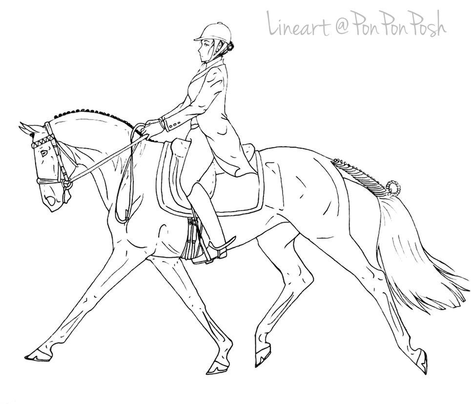 ausmalbilder pferde dressur  ausmalbilder pferde