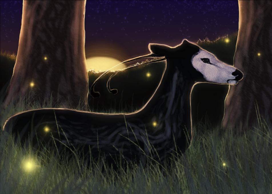 Fireflies by wispwolf