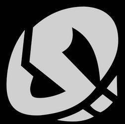 Team Skull Logo