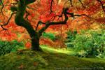 Japanese Autumn by La-Vita-a-Bella