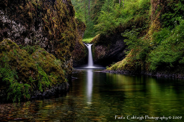 Waterfall - Punchbowl Falls by La-Vita-a-Bella