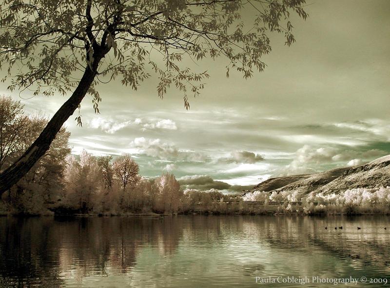Magija različitih godišnjih doba Infrared_Lake_by_La_Vita_a_Bella