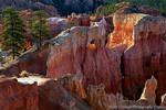 Bryce Canyon Morning Light