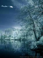 Infrared Blue Dreams by La-Vita-a-Bella