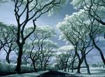 Infrared Canopy Drive by La-Vita-a-Bella