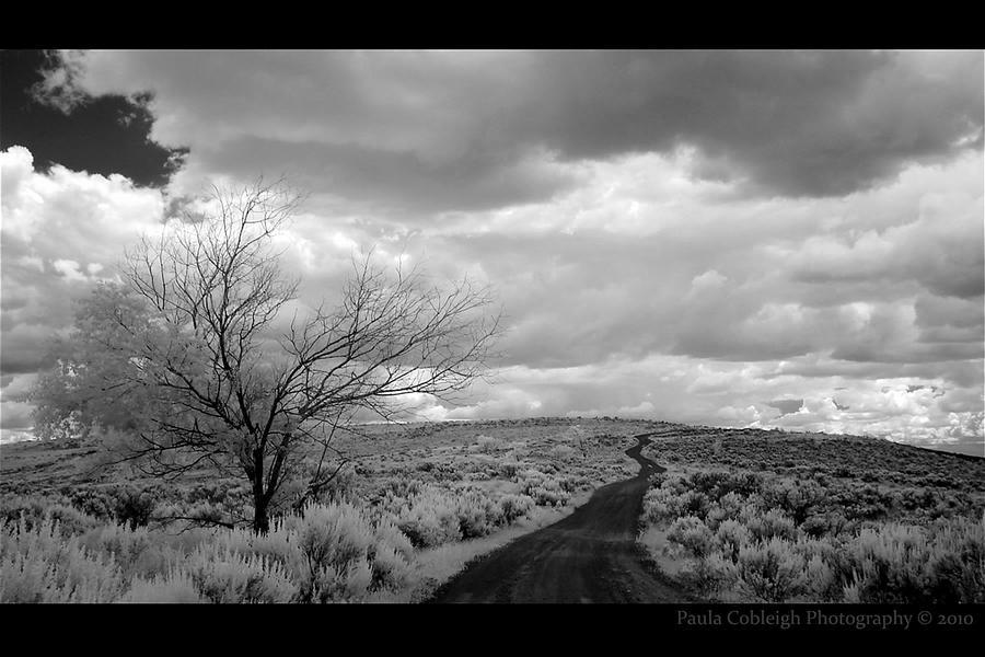 The Lonliest Road by La-Vita-a-Bella