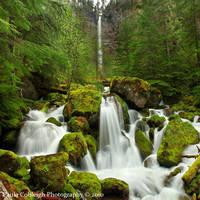 Waterfall - Watson Falls by La-Vita-a-Bella