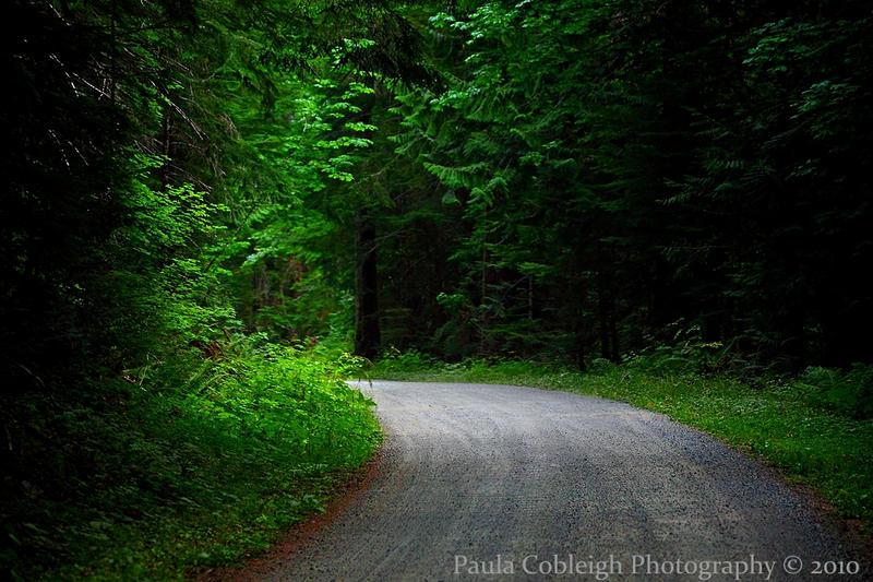 The Road to... by La-Vita-a-Bella
