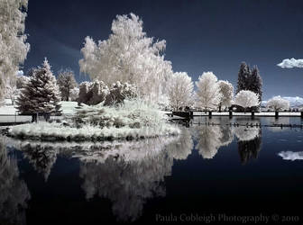 Time Stands Still - Infrared by La-Vita-a-Bella