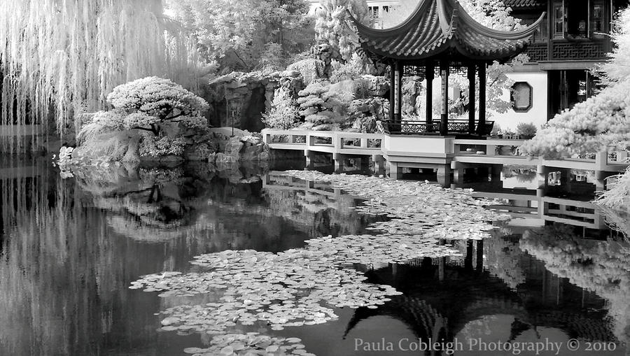 Infrared Chinese Garden