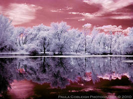 Dreaming Ultraviolet by La-Vita-a-Bella