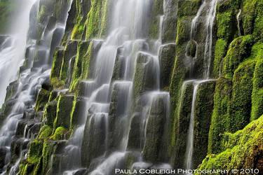 Waterfall - Proxy Falls - Up Close by La-Vita-a-Bella